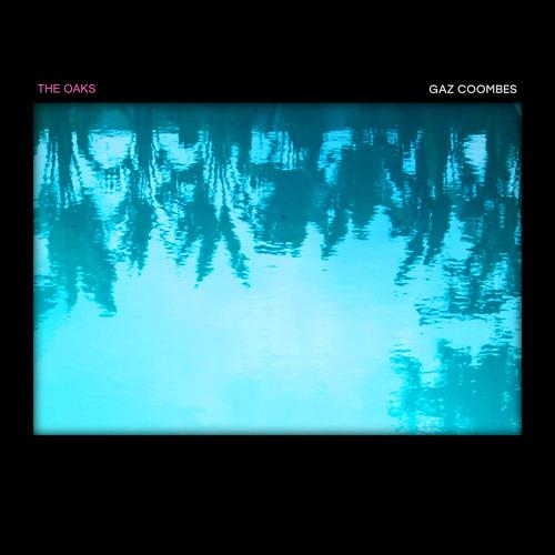 The Oaks (Remix) - Gaz Coombes - HF12LPRSD