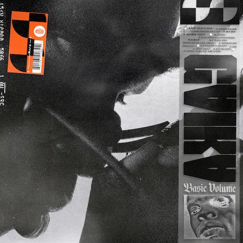 BASIC VOLUME - Gaika - WARPLP285