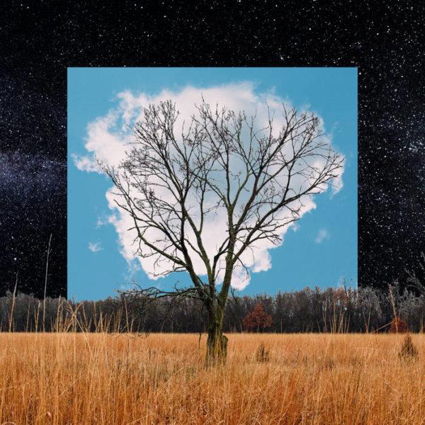 Bloom Innocent - Fink - RCPD018